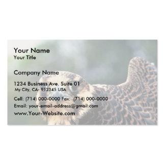 Halcón de peregrino plantillas de tarjeta de negocio