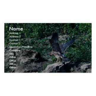 Halcón de peregrino plantilla de tarjeta de negocio