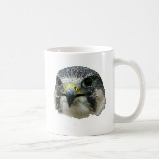 Halcón de peregrino tazas de café