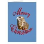 Halcón del navidad tarjetas