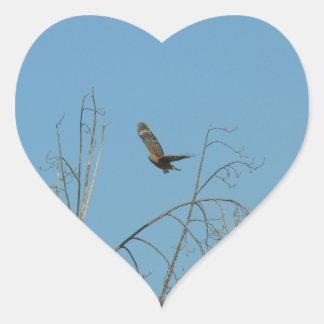 Halcón en vuelo pegatina corazón