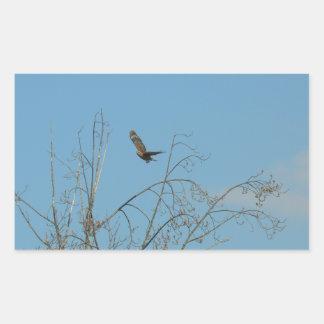 Halcón en vuelo rectangular altavoces