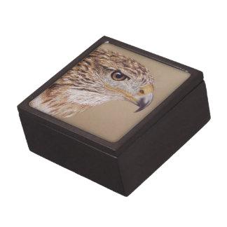 Halcón ferruginoso caja de recuerdo de calidad