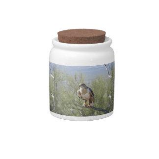 Halcón ferruginoso jarras para caramelos