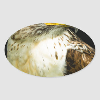 Halcón ferruginoso pegatina ovalada