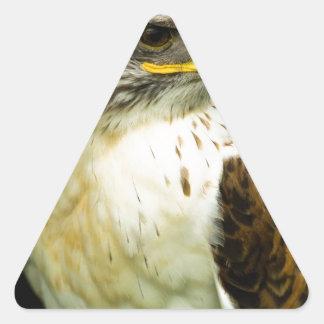 Halcón ferruginoso pegatina triangular