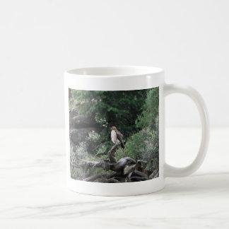 Halcón ferruginoso taza básica blanca