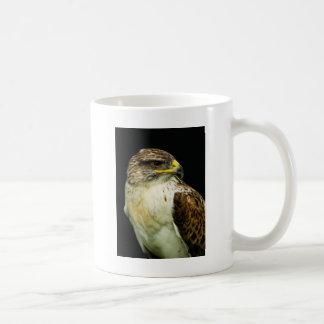 Halcón ferruginoso tazas de café