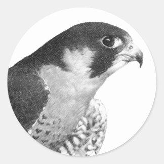 Halcón-Lápiz del peregrino Pegatinas Redondas