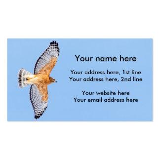 Halcón llevado a hombros rojo en vuelo tarjetas de visita