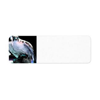 Halcón pintado etiquetas de remite