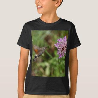 Halcón-polilla del colibrí (stellatarum de polera