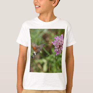 Halcón-polilla del colibrí (stellatarum de poleras
