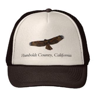halcón Rojo-atado en vuelo, el condado de Gorras