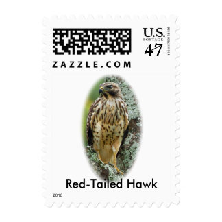 Halcón Rojo-Atado franqueo de la primera clase Sellos Postales