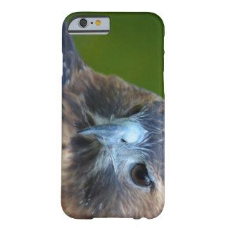 halcón Rojo-atado Funda De iPhone 6 Slim