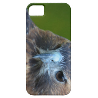 halcón Rojo-atado iPhone 5 Cobertura