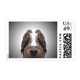 Halcones en un poste timbres postales