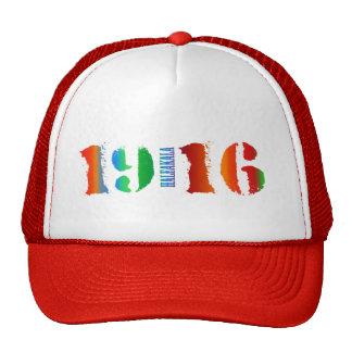 Haleakala National Park - 1916 Hats