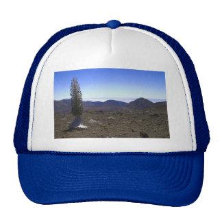Haleakulo Ahinahina Mesh Hat