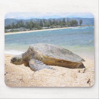 Haleiwa Honu on Last Day Mouse Pad