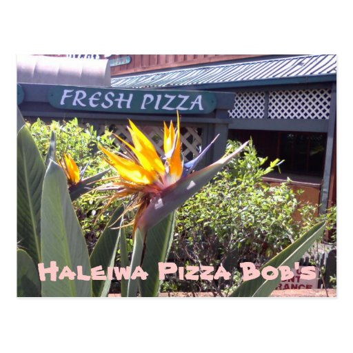 Haleiwa Pizza Bob's Postcard