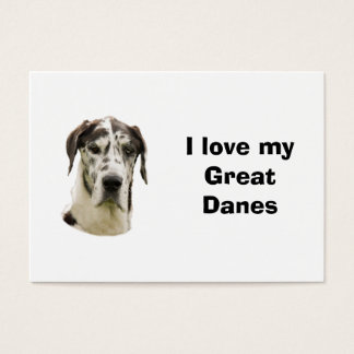 Halequin Great Dane pet photo Business Card