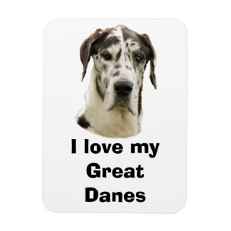 Halequin Great Dane pet photo Rectangular Photo Magnet