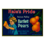Hale's Pride Pear Crate LabelSuisun, CA Poster