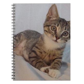 Haley Notebook