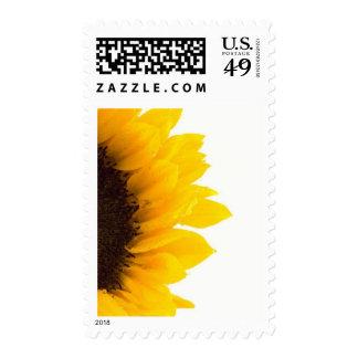 Half a Sunflower Stamp