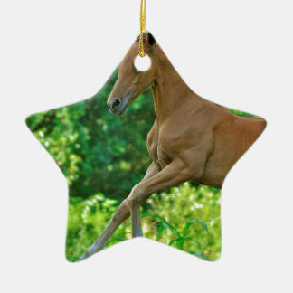 Half Arabian Colt Ceramic Ornament