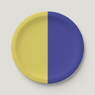 Half Blue / Half Yellow Paper Plate