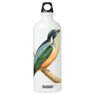 Half-collared Kingsfisher Bird Illustration by Wil Water Bottle