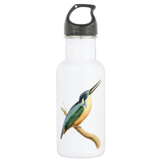 Half-collared Kingsfisher Stainless Steel Water Bottle