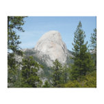 Half Dome from Panorama Trail II Canvas Print