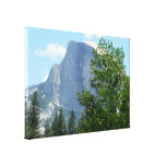 Half Dome in Summer from Yosemite National Park Canvas Print