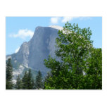Half Dome in Summer from Yosemite National Park Postcard
