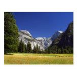 Half Dome In Yosemite National Park Postcards
