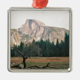 Half Dome Metal Ornament