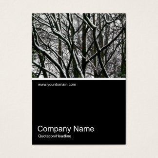 Half&Half Photo 0103 - Branches with Snow Business Card