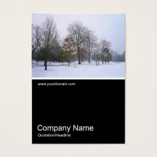 Half&Half Photo 0104 - Snow in the Park Business Card