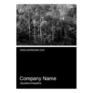 Half&Half Photo 0106 - Silver Birch Trees B&W Large Business Cards (Pack Of 100)