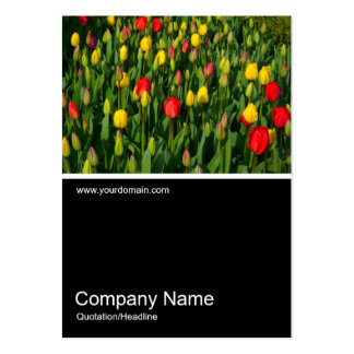Half&Half Photo 0150 - Colorful Tulips Large Business Card