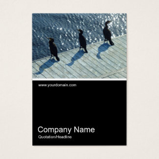 Half&Half Photo 0179 - Three Cormorants Business Card