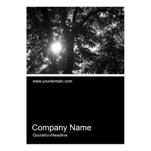 Half&Half Photo 0184 - Sun Through Trees B&W Business Cards