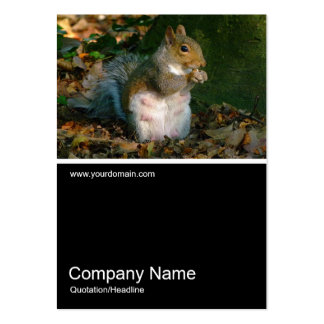 Half&Half Photo 0251 - Grey Squirrel Large Business Cards (Pack Of 100)