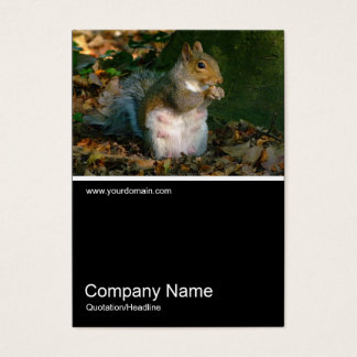 Half&Half Photo 0251 - Grey Squirrel Business Card