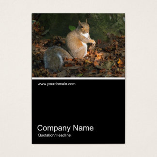 Half&Half Photo 0258 - Grey Squirrel Business Card