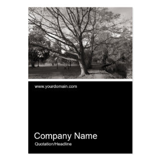 Half&Half Photo 0266 - Autumn in the Park Large Business Cards (Pack Of 100)